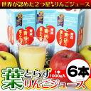 Applej-sam02
