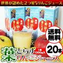 Applej-sam04