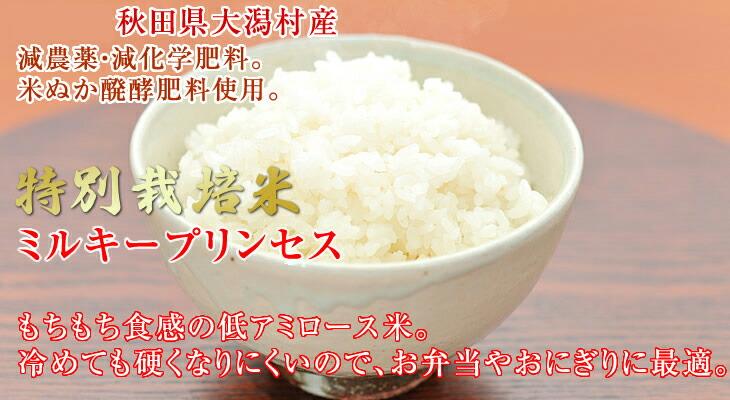 特別栽培米ミルキープリンセス