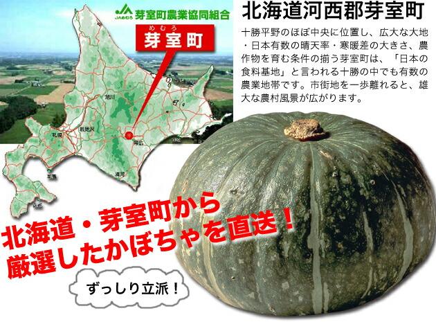 北海道・芽室町から厳選したかぼちゃを直送
