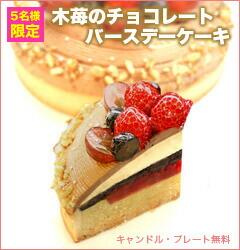 高級チョコレート使用!後味すっきりの木苺のチョコレートバースデーケーキ