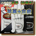 Mizuno /T-ZOID / sheep leather + synthetic leather left hand bag / open price / 45GO-70430/2-over at the same time buy in $ 0 shipping