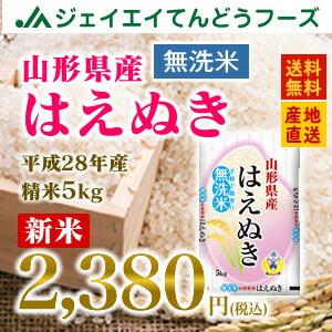 28年産 山形県産はえぬき無洗米5kg 送料無料※一部地域は別途送料追加