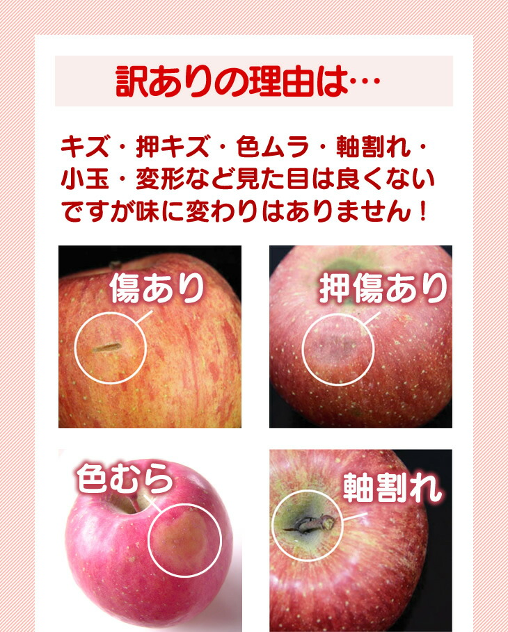 訳ありの理由は…キズ・押キズ・色ムラ・軸割れ・小玉・変形など見た目は良くないですが味に変わりはありません!その他、多く入りすぎたミツが果糖に変わることができずに茶色く変色してしまった、「ミツ褐変障害」のりんごが混ざることもありますが、ご了承ください。中身は普通のりんごと変わりありません!キズ部分をカットすれば、十分美味しく食べられるりんごです♪