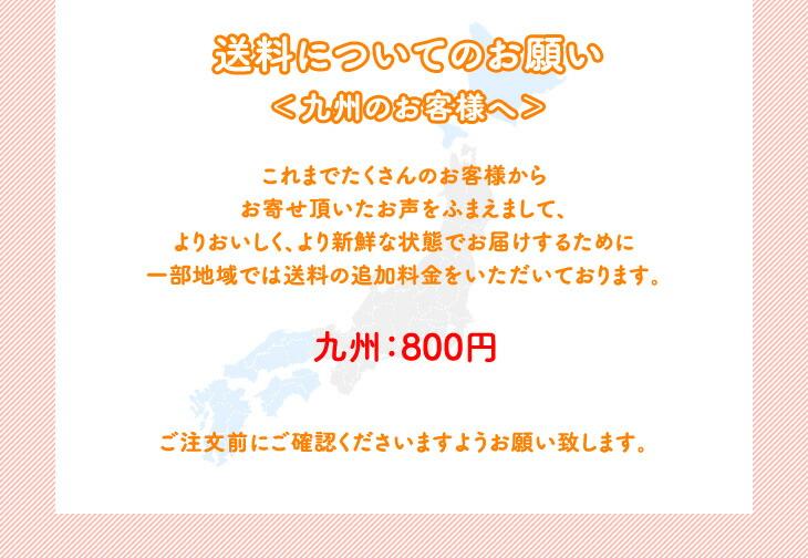 九州 送料追加料金のご注意