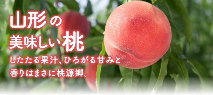 山形の美味しい桃