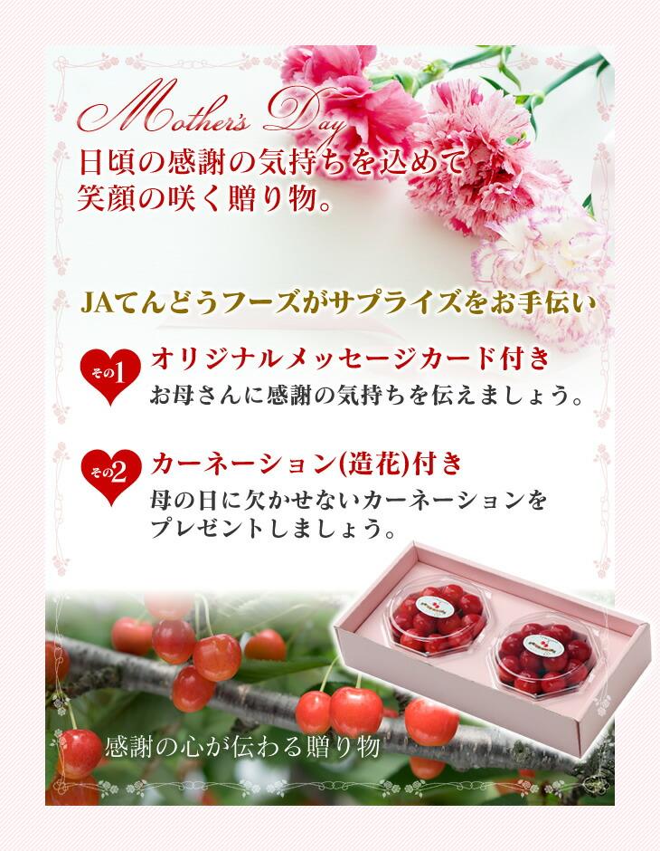 日頃の感謝の気持ちを込めて笑顔の咲く贈り物。 | JAてんどうフーズがサプライズをお手伝い | オリジナルメッセージカード付き | カーネーション(生花)付き