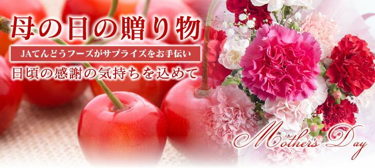 山形県産さくらんぼ、佐藤錦。母の日ギフトにピッタリ!初夏の山形の味。今年も美味しさ抜群です!