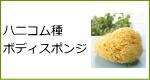 天然海綿スポンジ・ハニコム種ボディスポンジ