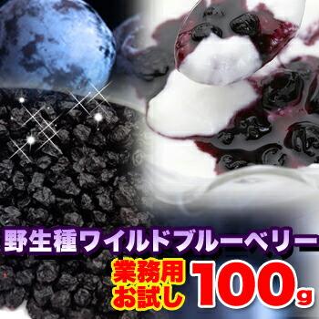 【お試し】野生種ワイルドブルーベリー100g ※【メーカー直送品】代引不可 個別送料別