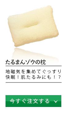 Gaiga(ガイガ)