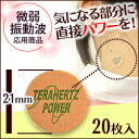 Terrapower seal (10 × 2 sheets)