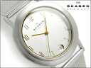 Skagen thin mens Watch Silver / Gold Dial universal belt 16 LSGS