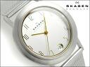 Skagen thin mens Watch Silver / Gold Dial universal belt 16 LSGS