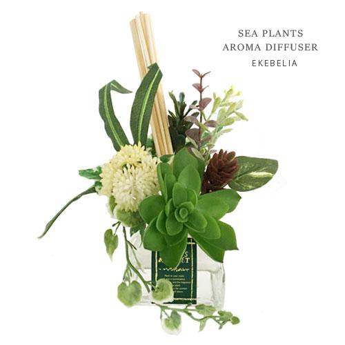 PLANTS MARKET シープランツ アロマ ディフューザー