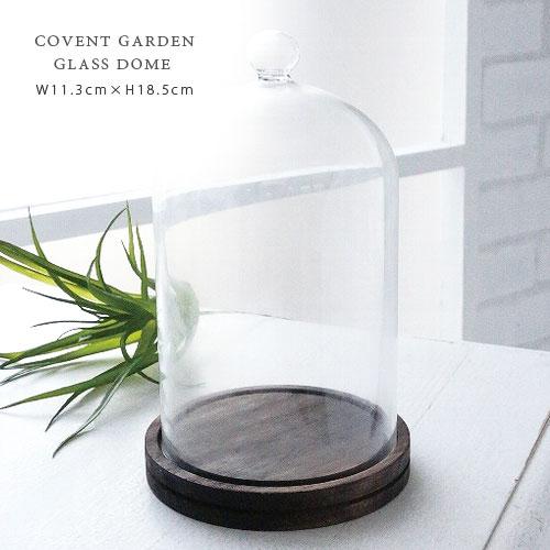 COVENT GARDEN プロジェクション ガラスドーム Ф11.3cm×H18.5cm 木製 ディスプレイ 【あす楽対応】