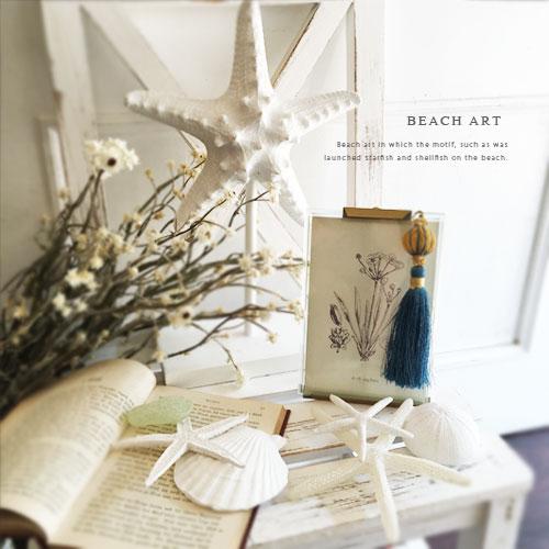 Beach Art �������ե��å��� �ǥ����ץ쥤 ������� ��ʪ ���֥��� �ҥȥ� �ޥ��������