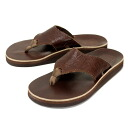 Postage, collect on delivery fee free regular handling THE SANDALMAN( sandals man) 501LACV-CF SANDAL(501LACV-CF sandals) FLORAL BROWN floral brown S021 in Japan