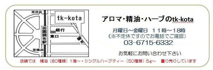 tk-kota地図・東京都大田区田園調布 渋谷・横浜・目黒からのアクセス便利