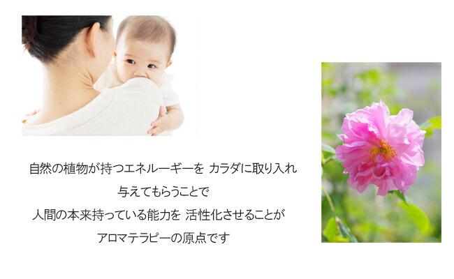 ナードの講座が、東京・田園調布でプライベートレッスンで受講できます