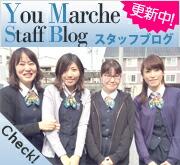 スタッフブログ更新中★
