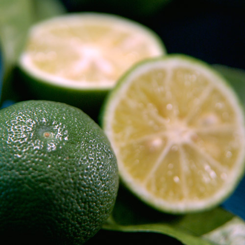 水饮料 清凉饮料 果实果汁 组合 品项详细资料    德岛县特产 [确保橘