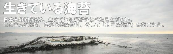 生きている海苔看板