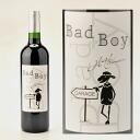2011 bad boy-BAD BOY-