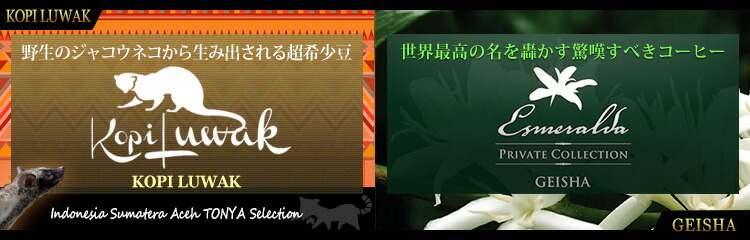 コピルアック&ゲイシャ 入荷!