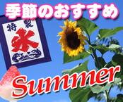 季節のおすすめ品(夏)