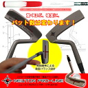 Limited Japan color specifications NEWTON PRO-LINE (TP-2010) iomic putter