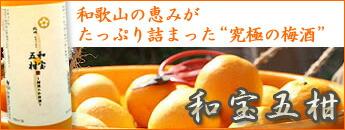 【中野酒造】和宝五柑
