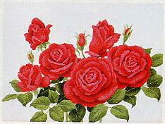東京文化刺繍キット54「紅いバラの花」(3号)