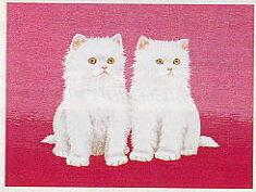 東京文化刺繍キット53「白い子ねこ」(3号)