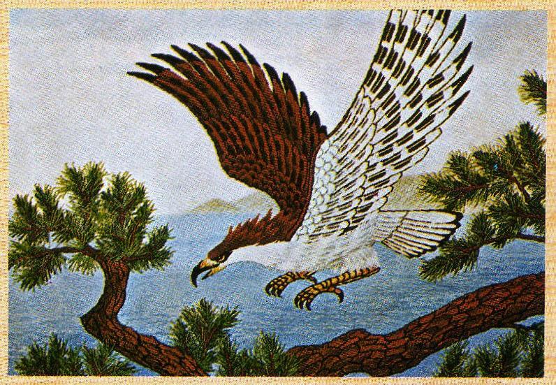 東京文化刺繍キット236「鷹」(6号)
