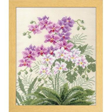 Olympusクロスステッチ刺繍キット 7452 「胡蝶蘭」 オノエ・メグミ ししゅうキットシリーズ 愛すべき花たち コチョウラン こちょうらん
