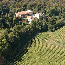 フェッラーリが所有するヴィッラマルゴンと畑