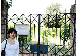 ブドウ畑の門