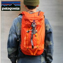 patagoniaAscensionist Pack 25L