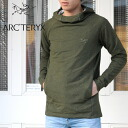 ARC 'TERYXQUIQ HOODY Men's (12039)(2013S/S)