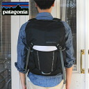 Patagonia Critical Mass Pack 22L (48220)