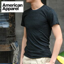 American Apparel Tri-blend T Shirt Unisex (men and women)