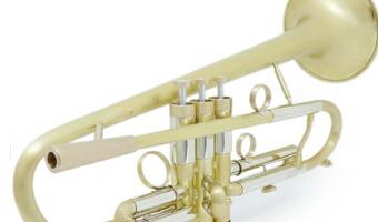 Brasspire 916 2b-1b Custom DZ