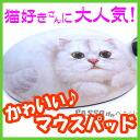 귀여운 고양이 형 마우스 패드 ♪ 올리비아. 친 칠 라 [헨리 캣 HenryCats&Friends] 10P12Sep14