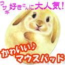 귀여운 토끼 형 마우스 패드 ♪ 로비 ◇ 폴란드 러프 [헨리 캣 HenryCats&Friends] 10P12Sep14