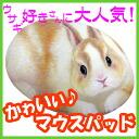 귀여운 토끼 형 마우스 패드 ♪ 루비 SMP-RA002. ネザーランドワーフ 토 [헨리 캣 HenryCats&Friends] 10P12Sep14