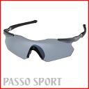 Swans sports sunglasses SWANS sunglasses Gullwing FLEX GU-9818M men's popular polarized lenses