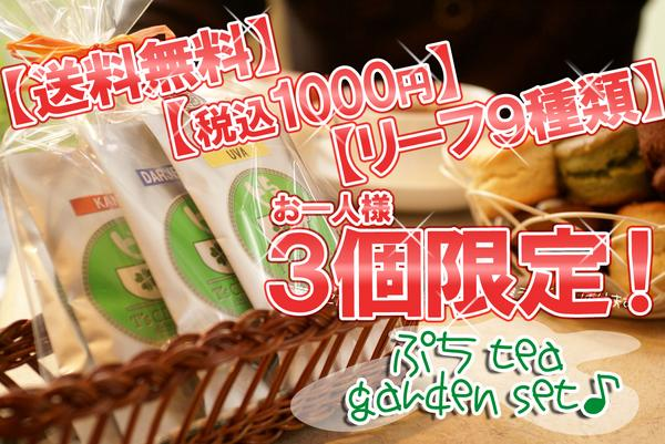 送料無料のリーフセット!9種×6gぷちTeaGardenSet
