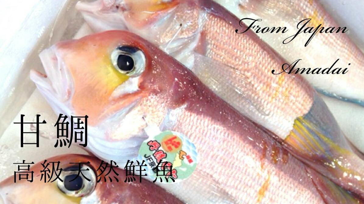 甘鯛 鮮魚 生 アマダイ