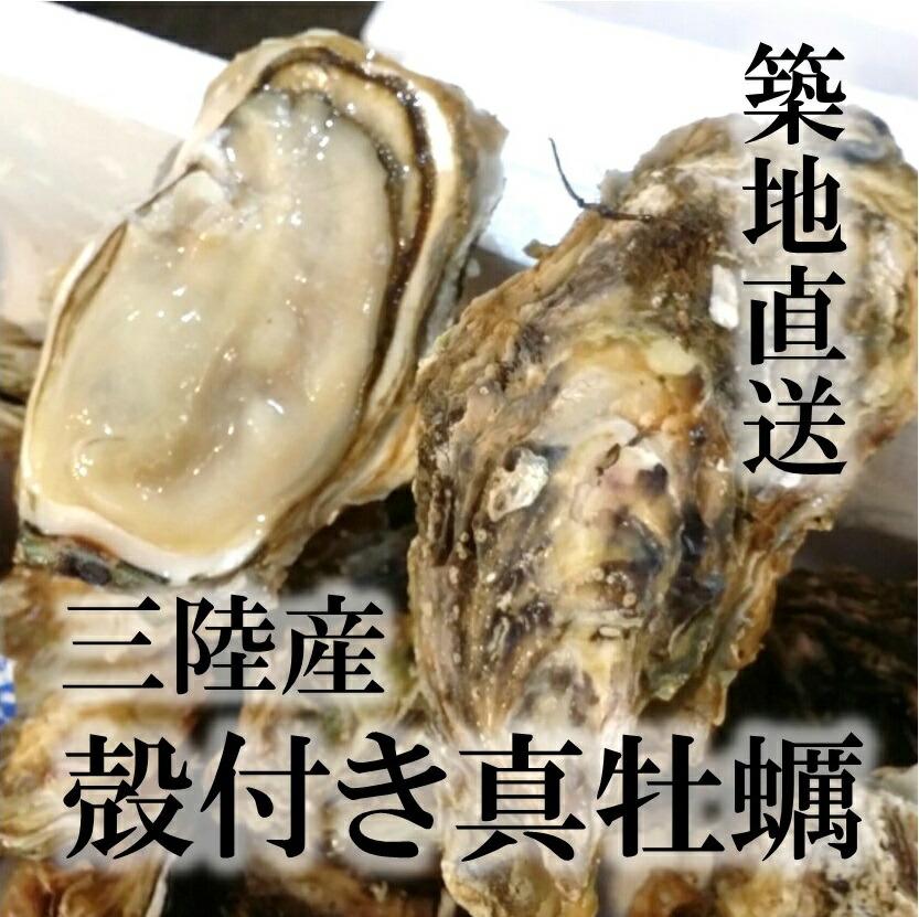 殻付き牡蠣 生食用カキ 三陸産